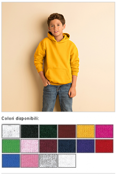 BLEND YOUTH HOODED SWEATSHIRT 27809